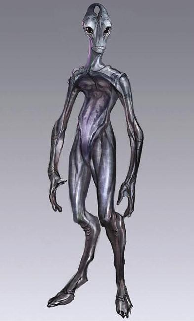 Облик саларианца без одежды - Саларианцы (Salarian) - Расы - Mass Effect